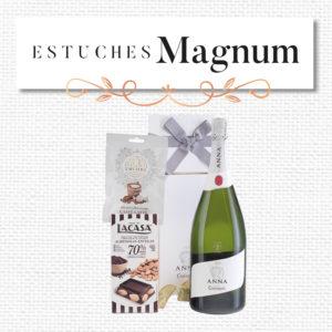 Estuches Magnum